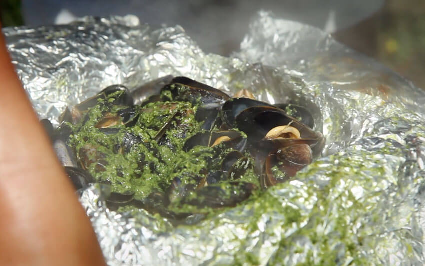 Make sure all of the mussels open before serving - Gen Taylor Recipe Video