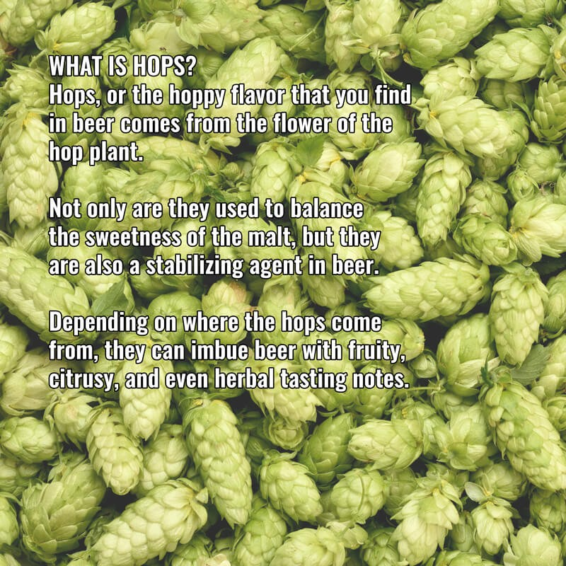 What is Hops