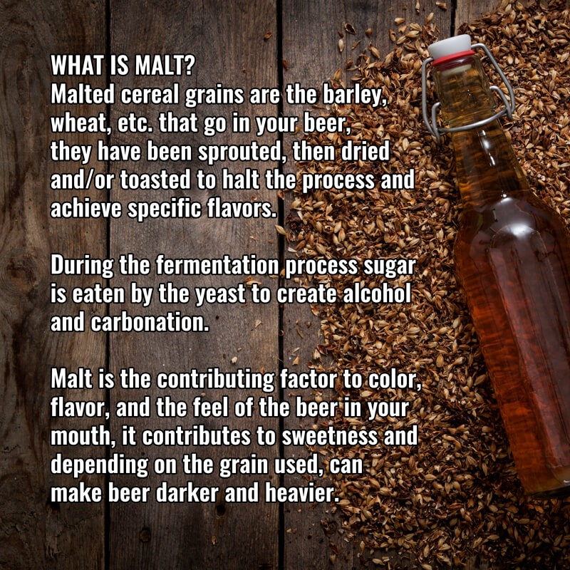 What is Malt